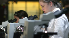 Students in a laboratory look through a microscope during their experiments - stock footage