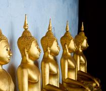the sitting golden buddha in the temple in thailand - stock photo
