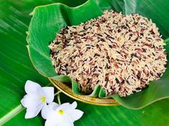 Stock Photo of mixed of high nutrient organic rice