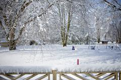 Snow covered backyard Stock Photos