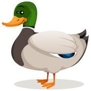 Stock Illustration of cartoon mallard duck