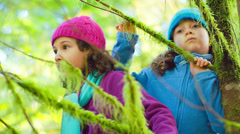 Two young girls walk through a forest and stop by a big tree and look around Stock Footage