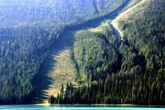 avalanche path at emerald lake, yoho national park, canada - stock photo