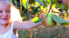 An adorable little girl smiles as she picks an apple off an apple tree - stock footage