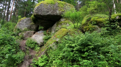 Panorama large rocks on the hillside. altai krai. russia. Stock Footage