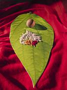 matrimony card in shape of betel leaf, piper betle with areca nut, rice, kumk - stock photo