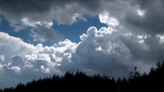 dense clouds with beautiful pines - stock footage