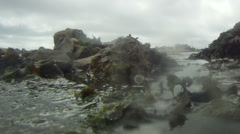 Incoming tide seaweed camera gets wet time lapse Stock Footage