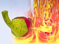 bright red chili pepper with flames to show the concept of the heat of the ch - stock illustration