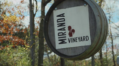 Miranda Vineyard (7 of 8) Stock Footage