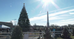 People visiting tree in front of White House 4k Stock Footage