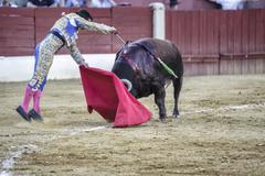 bullfighter julian lopez el juli stabbing the bull with the sword  - stock photo