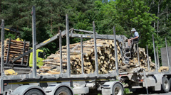 Man with special equipment load truck trailer with wood logs Stock Footage