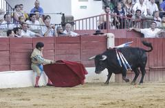 bullfighter luis francisco espla bullfighting with the crutch sitting on the - stock photo