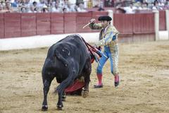 bullfighter luis francisco espla stabbing the bull with the sword  - stock photo