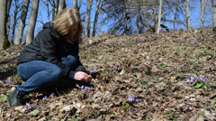Girl in the woods between the dry leaves reaps violet Stock Footage