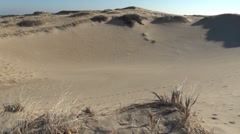 *dunesforegroundgrass Stock Footage