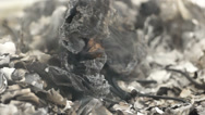 Stock Video Footage of completely burnt piece of paper in slow motion