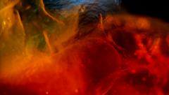 Stock Video Footage of Organic Material, colorful and experimental (2/3)