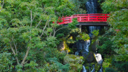 Stock Video Footage of Japanese Garden