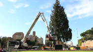 Stock Video Footage of Erecting a large christmas tree in Rome