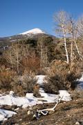 high mountain peak great basin region nevada landscape elk antlers - stock photo