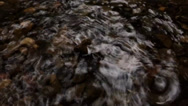Stock Video Footage of Drops & Ripples In A Pond Of Water