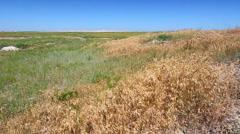 Buffalo Gap National Grassland - stock footage