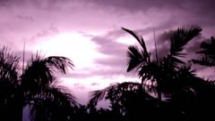 Beautiful lighting stormy night - stock footage