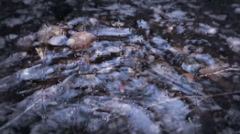 Rippling & dripping water Stock Footage