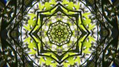 Green & White Kaleidoscope Stock Footage