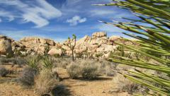 Joshua Tree National Park Landscape in The Mojave Desert of Southern California - stock footage