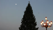 Stock Video Footage of Christmas tree and moon at St Peters