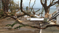 Typhoon aftermath incredible 7 meter storm surge knocks down trees structures Stock Footage
