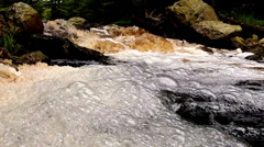 Bubbles in the forest river in Parc naturel Hautes Fagnes - Eifel. Stock Footage