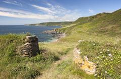 Stock Photo of devon coastline in summer