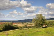 Stock Photo of cotswold landscape
