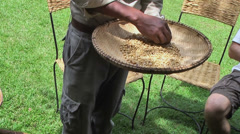 Plate with clear raw coffee beans in hands of man Stock Footage