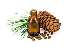 oil with cedar cone and nuts - stock photo
