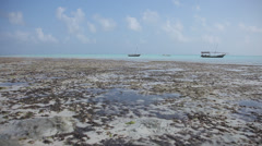 Low Tide Ocean & Dhow Stock Footage