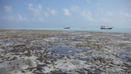 Stock Video Footage of Low Tide Ocean & Dhow
