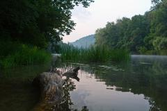 View of the river seversky donets Stock Photos