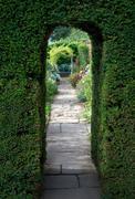 Yew arch, english garden Stock Photos