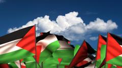 Waving Palestinian Flags Stock Footage