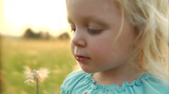A little girl attempts to blow dandelion seeds but gives up and shakes the stem - stock footage