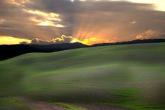 Stock Photo of tuscan county 3