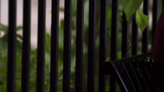 A young adult male sits on a bench expressing sadness Stock Footage