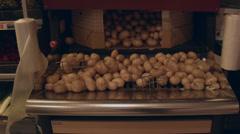 Potatoes Stock Footage