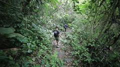 Trekking in the jungle - stock footage