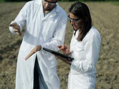 couple of scientists working with tablet in the field - stock footage